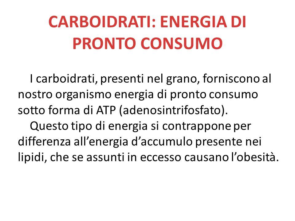 CARBOIDRATI: ENERGIA DI PRONTO CONSUMO I carboidrati, presenti nel grano, forniscono al nostro organismo energia di pronto consumo sotto forma di ATP