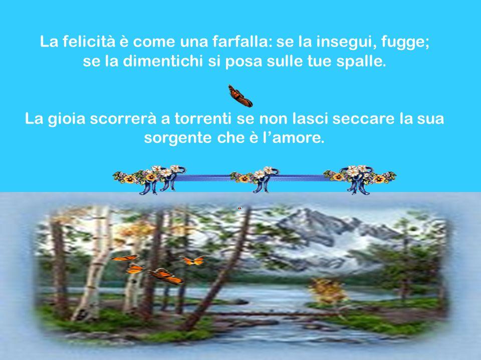 La felicità è come una farfalla: se la insegui, fugge; se la dimentichi si posa sulle tue spalle.