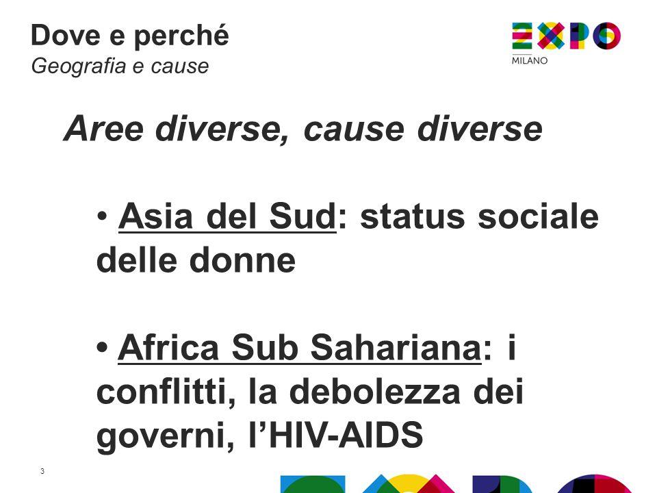 Aree diverse, cause diverse Asia del Sud: status sociale delle donne Africa Sub Sahariana: i conflitti, la debolezza dei governi, l'HIV-AIDS Dove e perché Geografia e cause 3