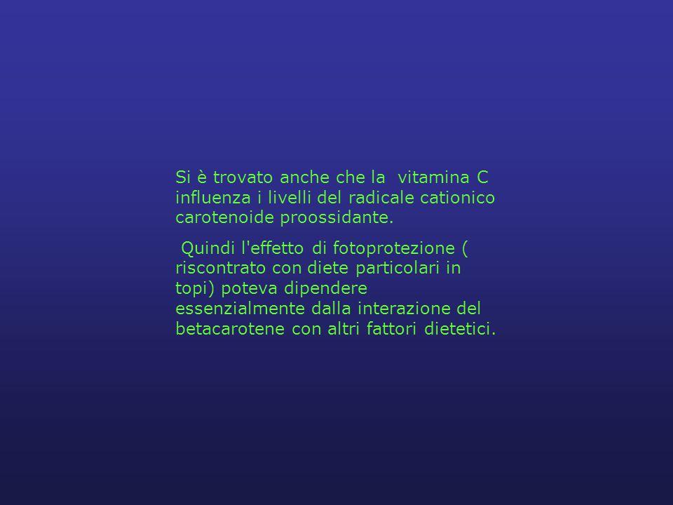 Si è trovato anche che la vitamina C influenza i livelli del radicale cationico carotenoide proossidante.