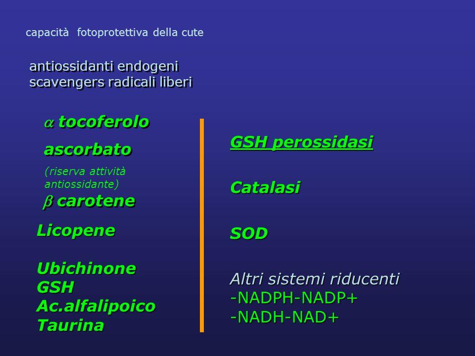  tocoferolo ascorbato antiossidanti endogeni scavengers radicali liberi antiossidanti endogeni scavengers radicali liberi  carotene capacità fotoprotettiva della cute (riserva attività antiossidante) LicopeneUbichinoneGSH Ac.alfalipoico Taurina GSH perossidasi CatalasiSOD Altri sistemi riducenti -NADPH-NADP+-NADH-NAD+