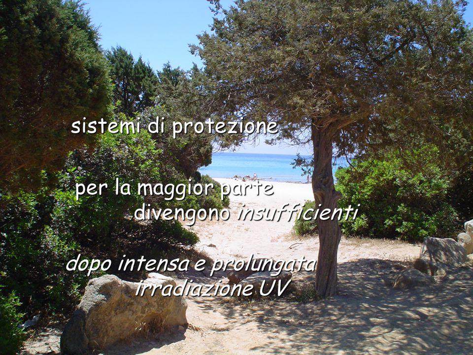 per la maggior parte per la maggior parte divengono insufficienti divengono insufficienti dopo intensa e prolungata irradiazione UV irradiazione UV sistemi di protezione sistemi di protezione