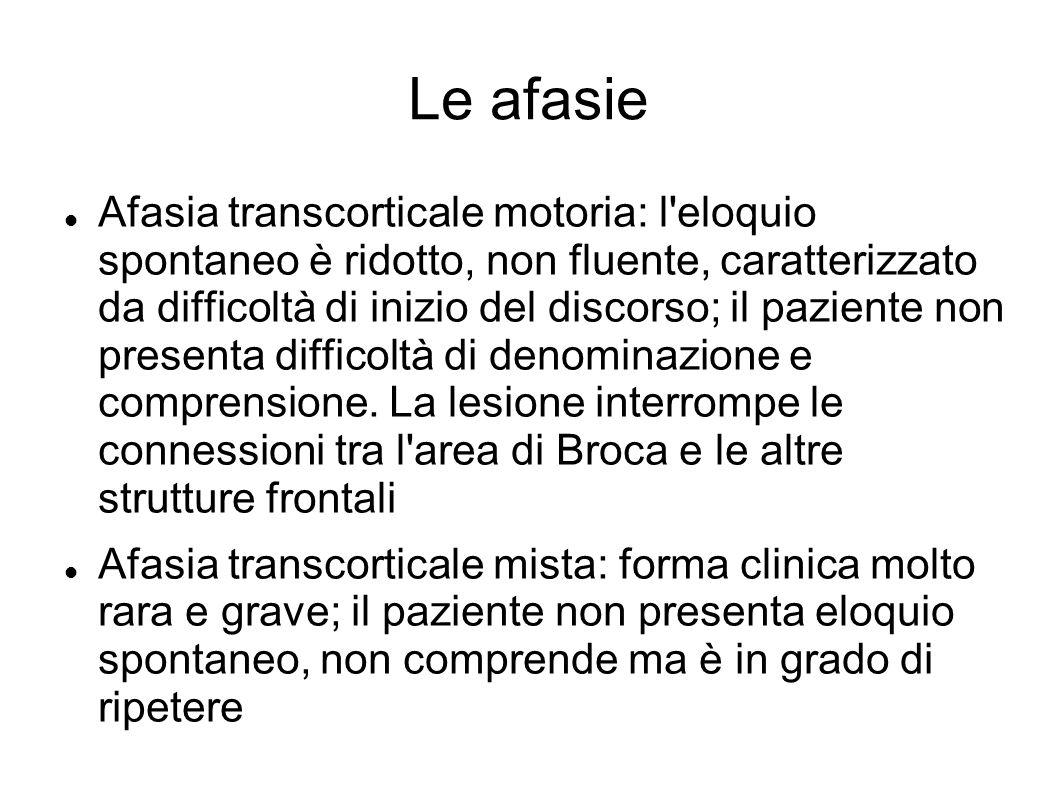 Le afasie Afasia transcorticale motoria: l'eloquio spontaneo è ridotto, non fluente, caratterizzato da difficoltà di inizio del discorso; il paziente