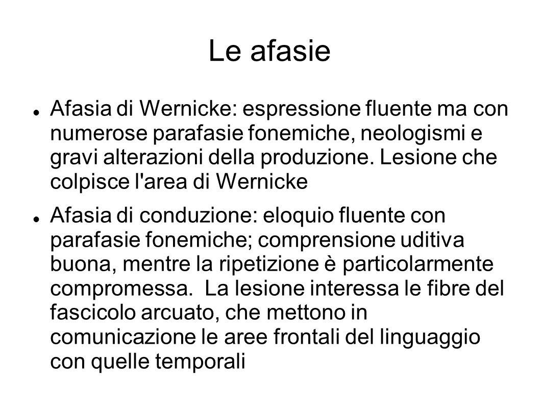 Le afasie Afasia di Wernicke: espressione fluente ma con numerose parafasie fonemiche, neologismi e gravi alterazioni della produzione. Lesione che co