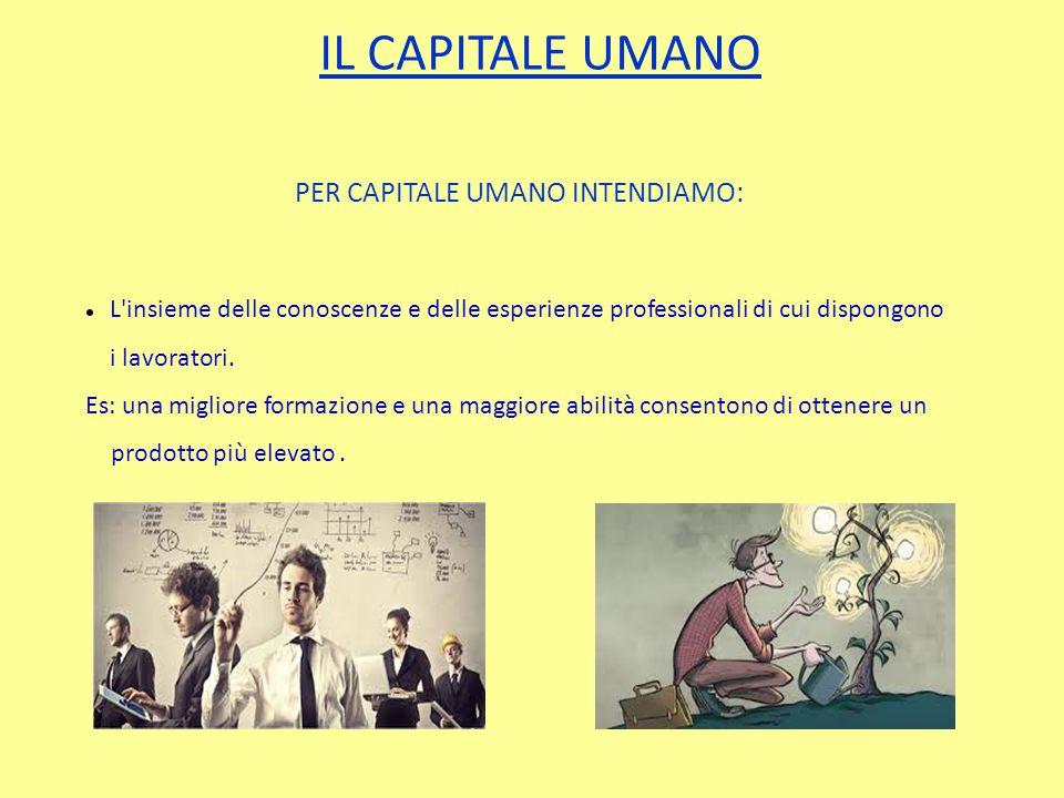 IL CAPITALE UMANO PER CAPITALE UMANO INTENDIAMO: L insieme delle conoscenze e delle esperienze professionali di cui dispongono i lavoratori.
