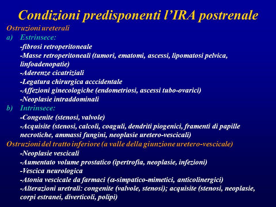 Condizioni predisponenti l'IRA postrenale Ostruzioni ureterali a)Estrinsece: -fibrosi retroperitoneale -Masse retroperitoneali (tumori, ematomi, ascessi, lipomatosi pelvica, linfoadenopatie) -Aderenze cicatriziali -Legatura chirurgica acccidentale -Affezioni ginecologiche (endometriosi, ascessi tubo-ovarici) -Neoplasie intraddominali b)Intrinsece: -Congenite (stenosi, valvole) -Acquisite (stenosi, calcoli, coaguli, dendriti piogenici, framenti di papille necrotiche, ammassi fungini, neoplasie uretero-vescicali) Ostruzioni del tratto inferiore (a valle della giunzione uretero-vescicale) -Neoplasie vescicali -Aumentato volume prostatico (ipertrofia, neoplasie, infezioni) -Vescica neurologica -Atonia vescicale da farmaci (  -simpatico-mimetici, anticolinergici) -Alterazioni uretrali: congenite (valvole, stenosi); acquisite (stenosi, neoplasie, corpi estranei, diverticoli, polipi)