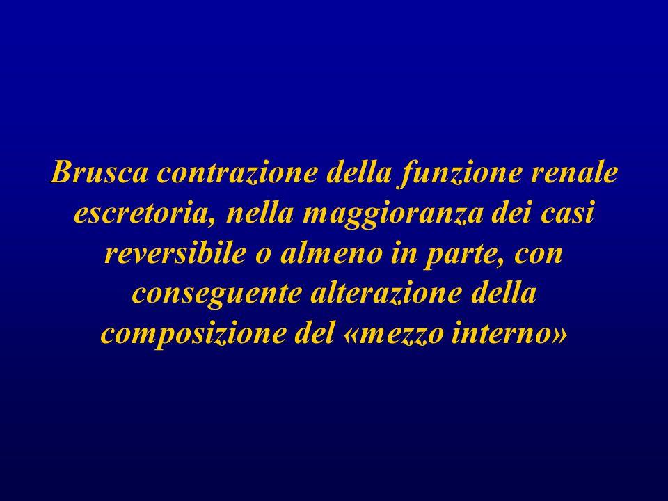 Brusca contrazione della funzione renale escretoria, nella maggioranza dei casi reversibile o almeno in parte, con conseguente alterazione della composizione del «mezzo interno»