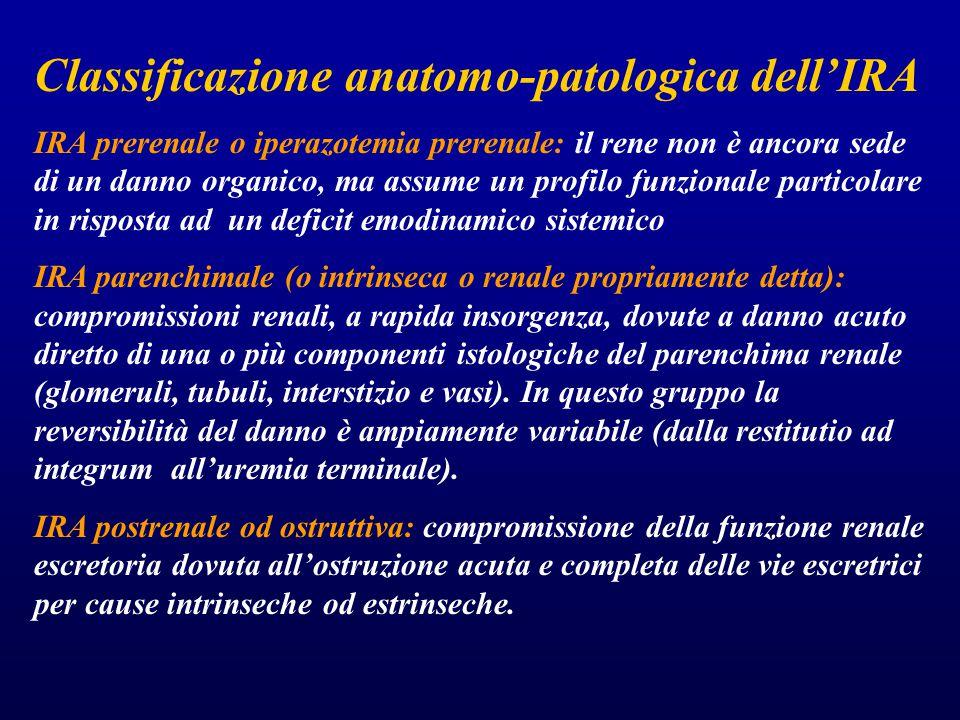 Classificazione anatomo-patologica dell'IRA IRA prerenale o iperazotemia prerenale: il rene non è ancora sede di un danno organico, ma assume un profi