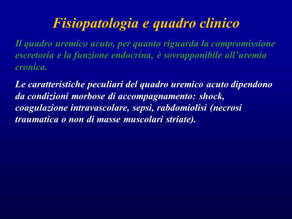 Fisiopatologia e quadro clinico Il quadro uremico acuto, per quanto riguarda la compromissione escretoria e la funzione endocrina, è sovrapponibile al