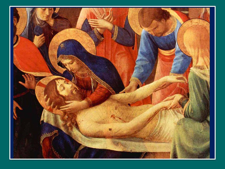 Cujus latus perforatum fluxit aqua et sanguine. dal cui fianco squarciato sgorgò acqua e sangue.