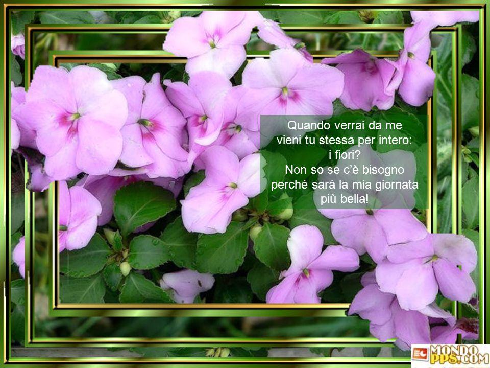 … che siano profumati delicati allegri: tutti simili a te!