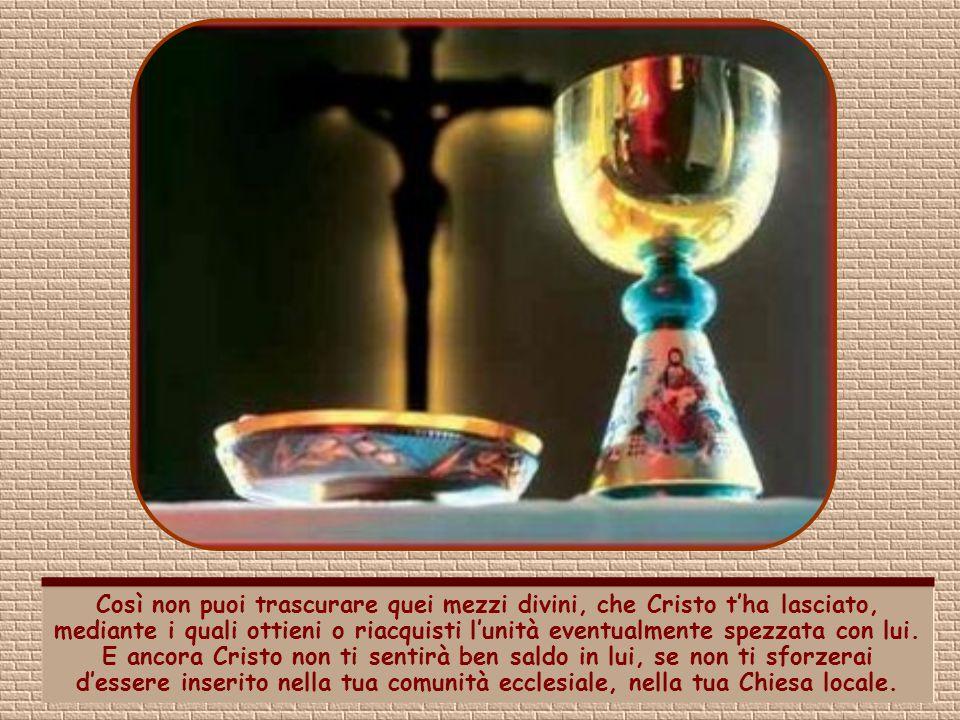 Occorre anzitutto che tu creda in Cristo. Ma ciò non basta. La tua fede deve influire sulla dimensione concreta della vita. Devi cioè vivere conforme