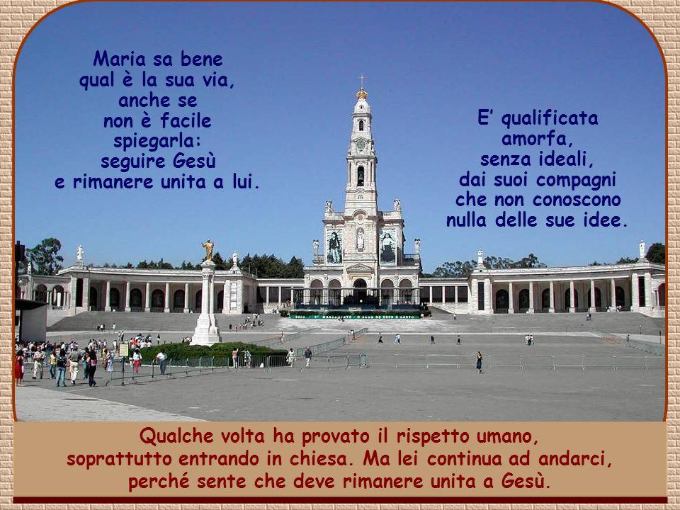 Siamo in Portogallo. Maria do Socorro, finito il liceo, è entrata all'università. L'ambiente è difficile. Molti suoi compagni lottano, seguendo la pro