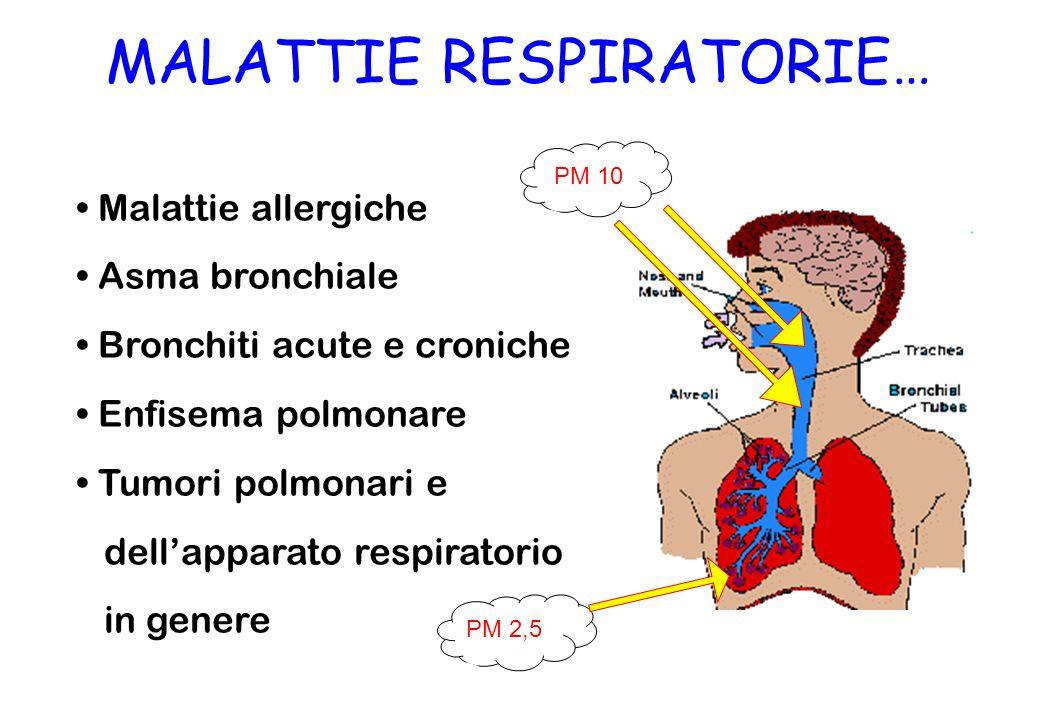 MALATTIE RESPIRATORIE… Malattie allergiche Asma bronchiale Bronchiti acute e croniche Enfisema polmonare Tumori polmonari e dell'apparato respiratorio