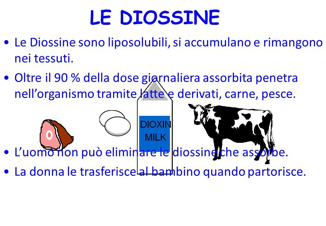 Le Diossine sono liposolubili, si accumulano e rimangono nei tessuti. Oltre il 90 % della dose giornaliera assorbita penetra nell'organismo tramite la