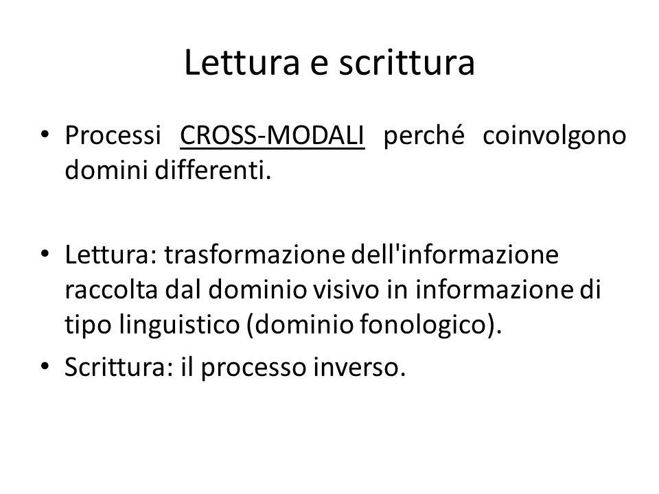 Lettura e scrittura Processi CROSS-MODALI perché coinvolgono domini differenti. Lettura: trasformazione dell'informazione raccolta dal dominio visivo