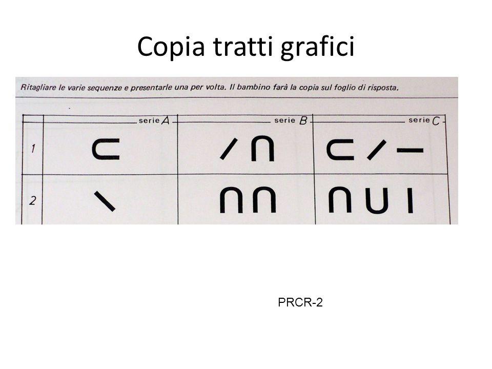 Copia tratti grafici PRCR-2