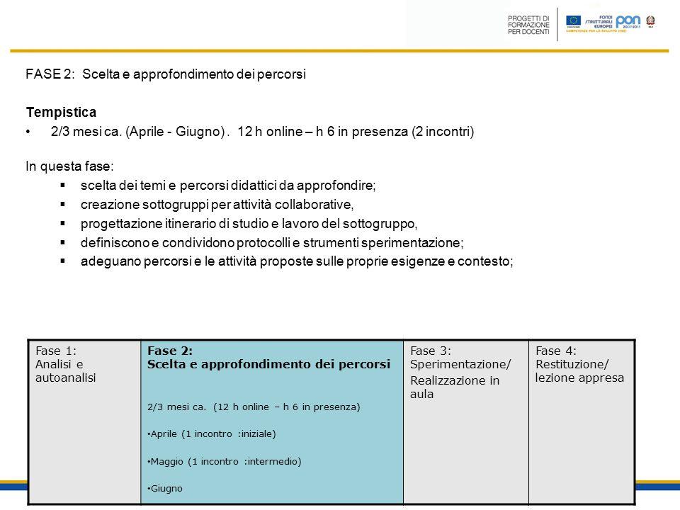 FASE 2: Scelta e approfondimento dei percorsi Tempistica 2/3 mesi ca.