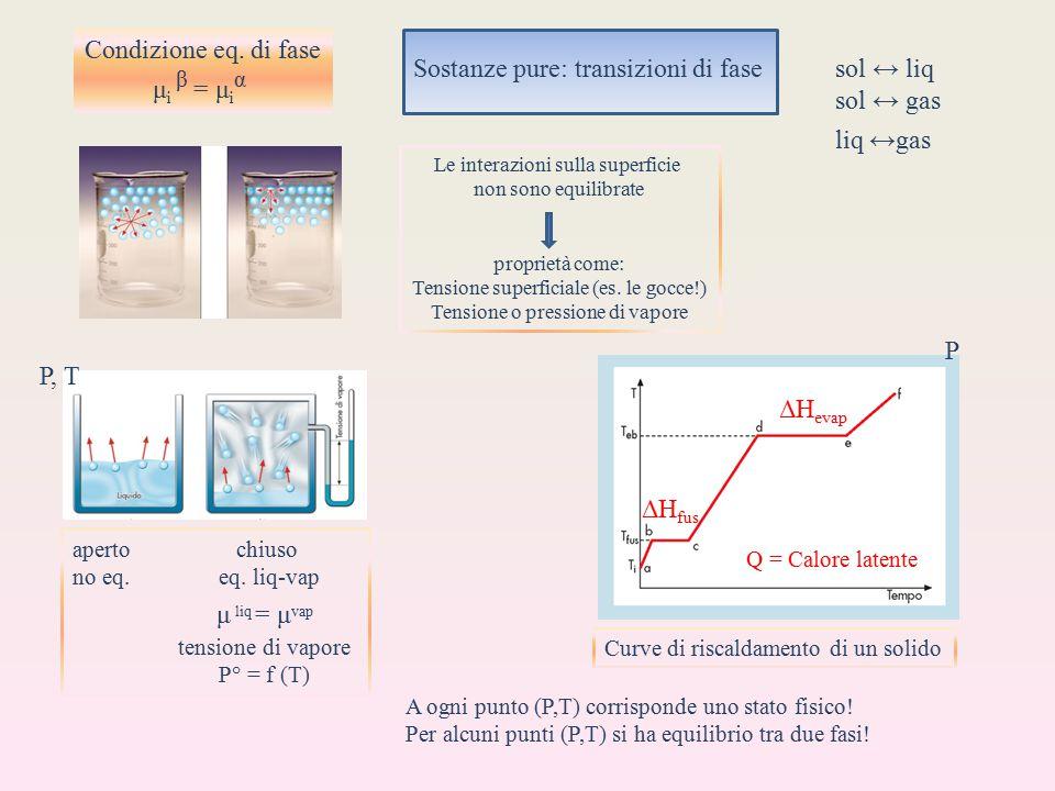 Condizione eq. di fase μ i β = μ i α Sostanze pure: transizioni di fase sol ↔ liq sol ↔ gas liq ↔gas Le interazioni sulla superficie non sono equilibr