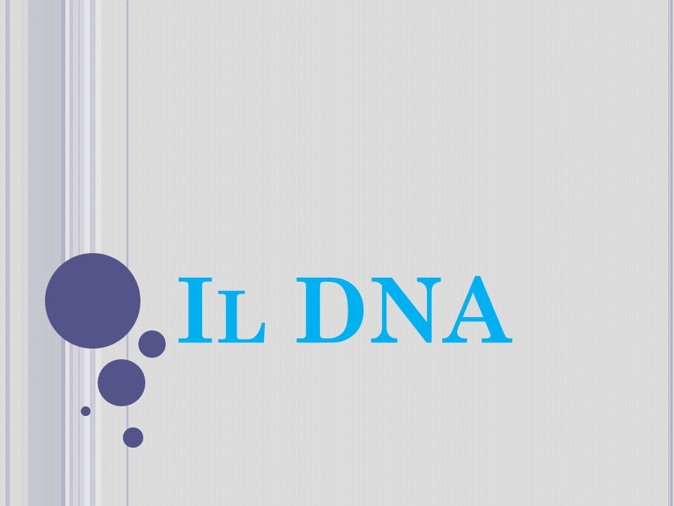 L A MOLECOLA DELLA VITA : IL DNA le caratteristiche di ogni essere vivente sono scritte indelebilmente nelle molecole del suo DNA (acido desossiribonucleico), che costituisce il suo patrimonio ereditario e contiene le informazioni necessarie per controllare tutte le attività dell organismo.