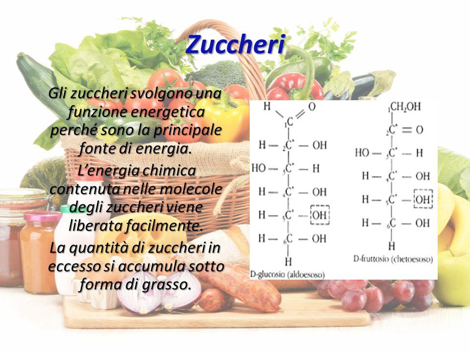Grassi Anche i grassi svolgono funzione energetica e contengono più del doppio di energia di zuccheri e proteine.Tuttavia,la digestione dei grassi è più lunga e complessa di quella degli zuccheri.I grassi ingeriti in eccesso si accumulano nei tessuti.