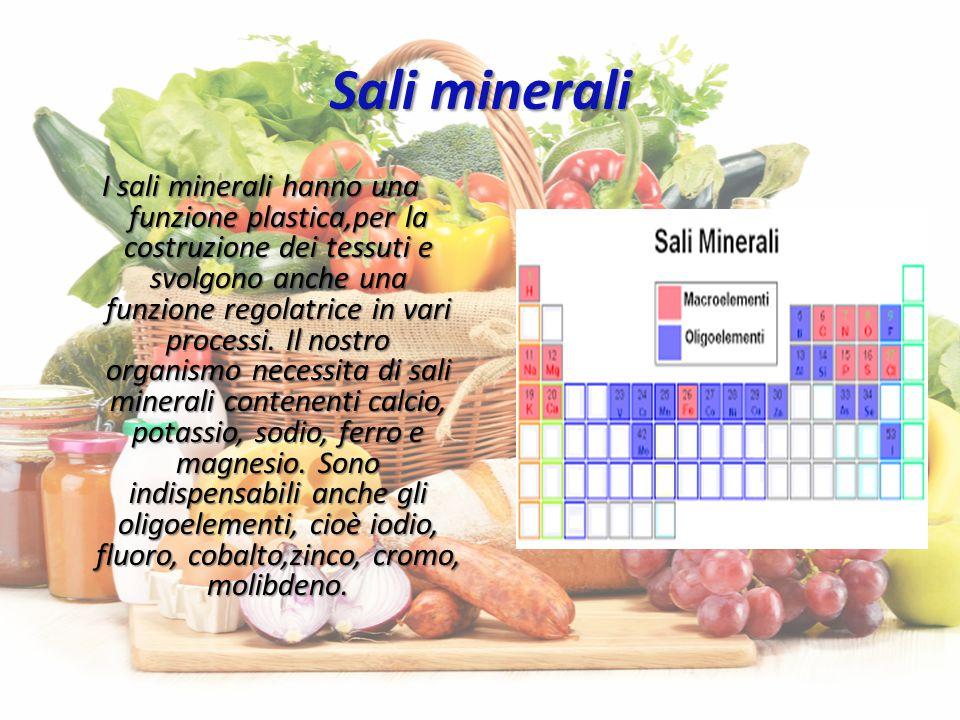 Sali minerali I sali minerali hanno una funzione plastica,per la costruzione dei tessuti e svolgono anche una funzione regolatrice in vari processi.