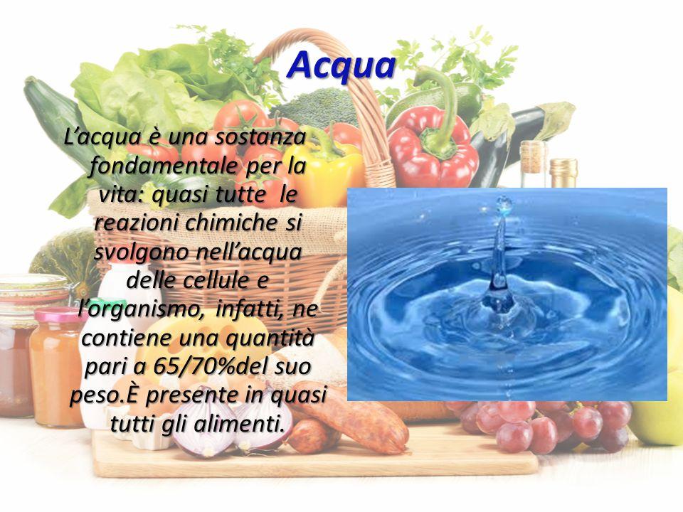 Acqua L'acqua è una sostanza fondamentale per la vita: quasi tutte le reazioni chimiche si svolgono nell'acqua delle cellule e l'organismo, infatti, ne contiene una quantità pari a 65/70%del suo peso.Ѐ presente in quasi tutti gli alimenti.