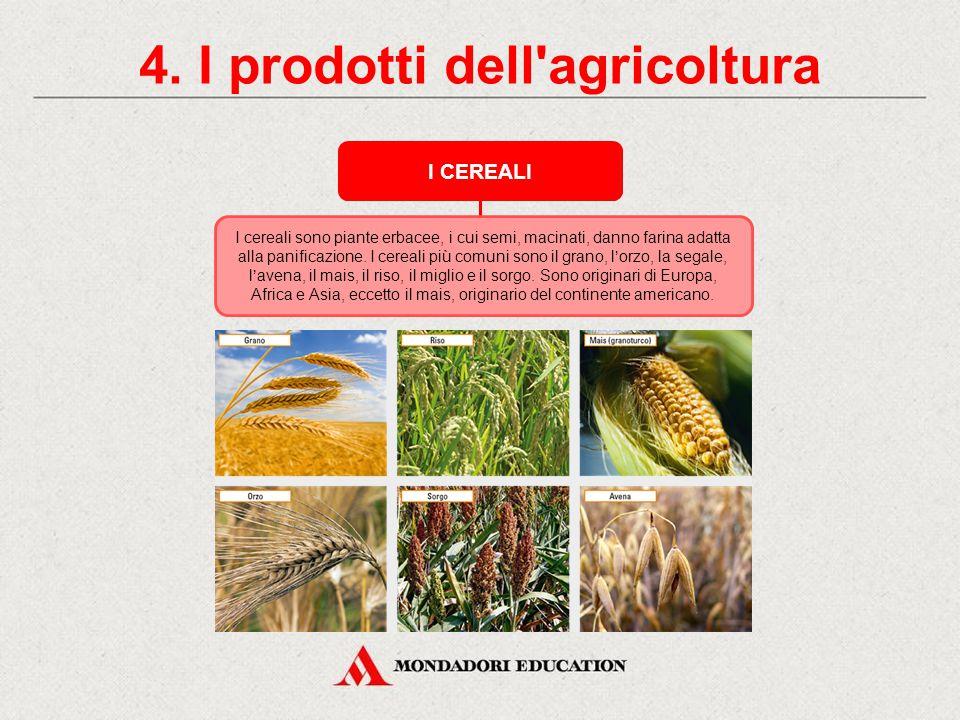 3. Le tecniche dell'agricoltura AGRICOLTURA BIOLOGICA L'abuso dei prodotti chimici in agricoltura è pericoloso per l'ambiente. Per questo motivo si st