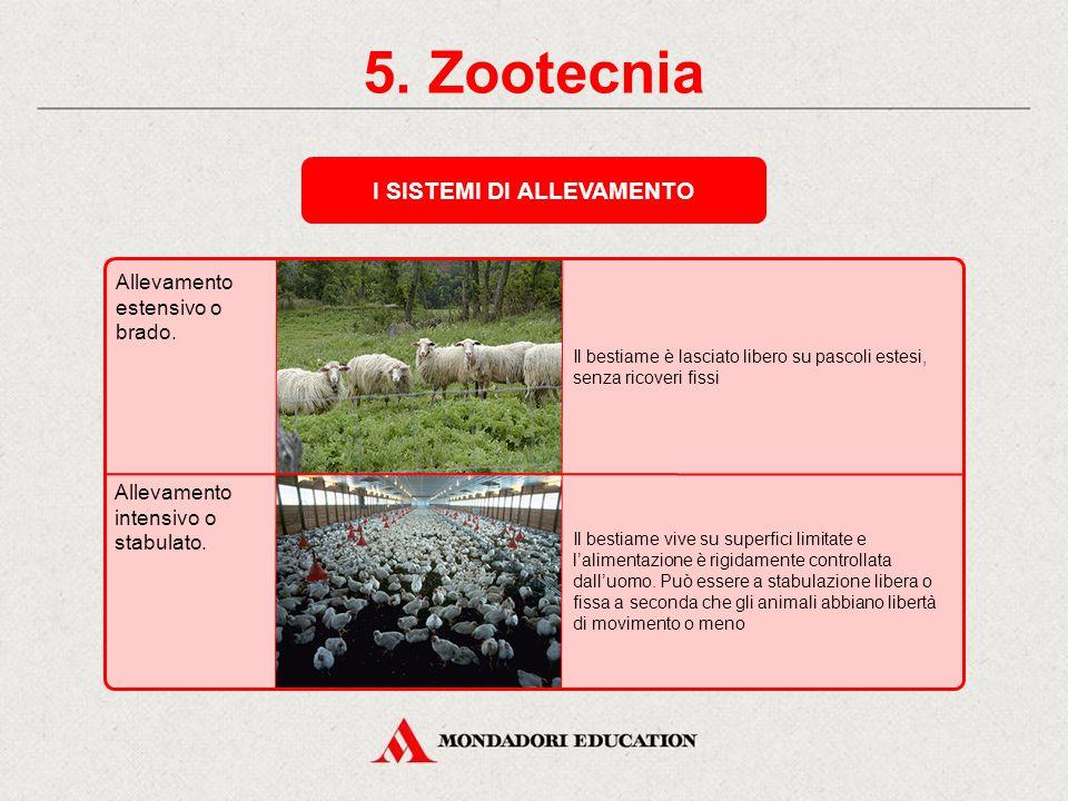5. Zootecnia LA ZOOTECNIA OGGI Il moderno allevamento si basa su: i miglioramenti apportati dalla ricerca sulla riproduzione e sull'alimentazione del
