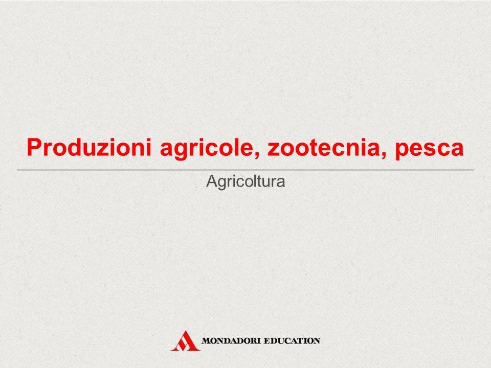 Agricoltura