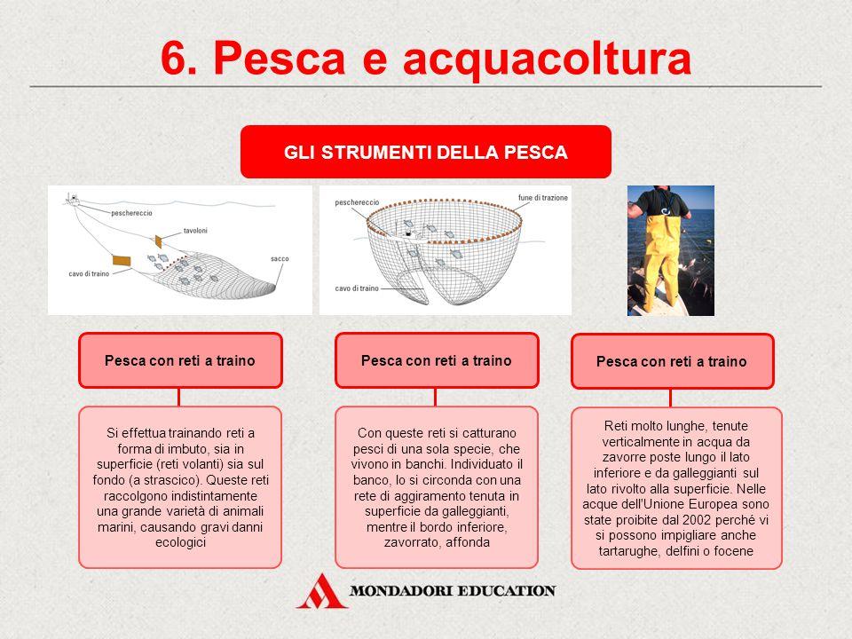 6. Pesca e acquacoltura L'INDUSTRIA DELLA PESCA La pesca commerciale è l'attività di ricerca e cattura di pesci e prodotti ittici finalizzata al loro