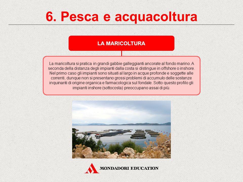6. Pesca e acquacoltura L'ACQUACOLTURA L'acquacoltura consiste nell'allevamento di pesce o molluschi in ambienti confinati e controllati come gabbie,