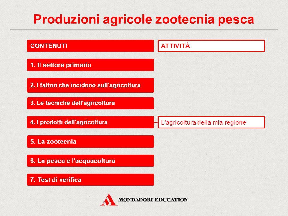 Produzioni agricole, zootecnia, pesca Agricoltura