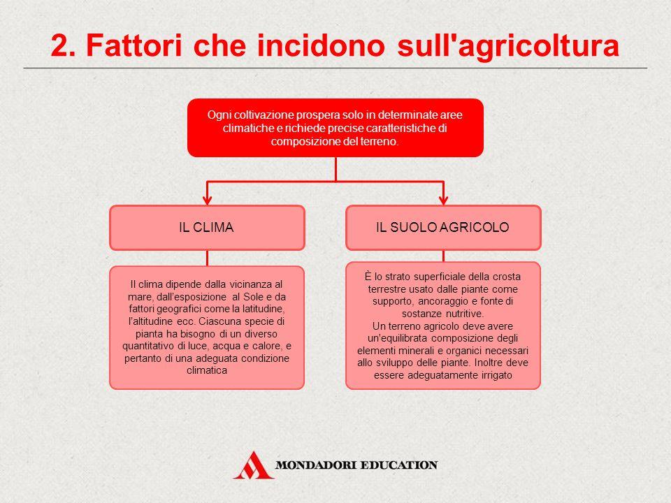 1. Il settore primario Il settore primario raggruppa tutte le attività che riguardano le colture. Esso comprende le seguenti sezioni: AgricolturaSilvi