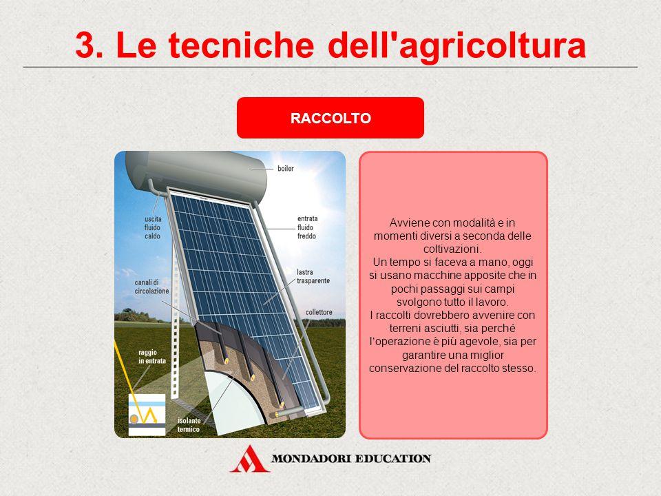 3. Le tecniche dell'agricoltura LAVORI DI COLTIVAZIONE Può essere fatta a dimora, cioè sul campo con macchine seminatrici, o in semenzaio protetto e c
