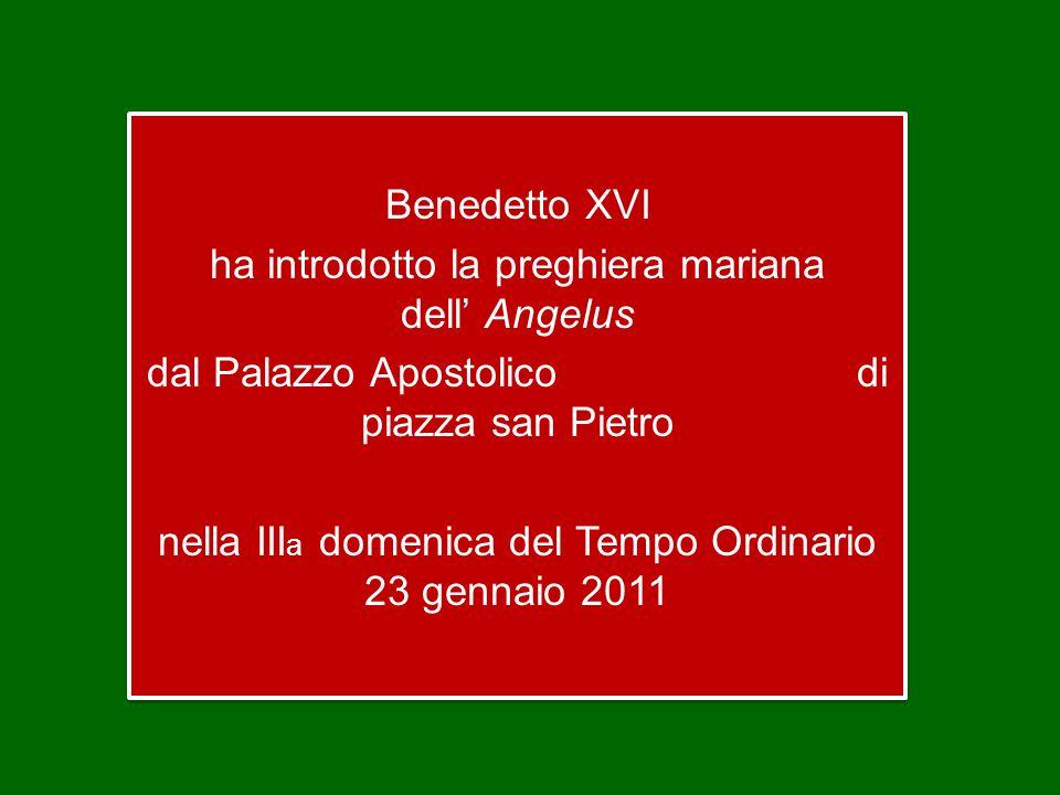 Benedetto XVI ha introdotto la preghiera mariana dell' Angelus dal Palazzo Apostolico di piazza san Pietro nella III a domenica del Tempo Ordinario 23 gennaio 2011 Benedetto XVI ha introdotto la preghiera mariana dell' Angelus dal Palazzo Apostolico di piazza san Pietro nella III a domenica del Tempo Ordinario 23 gennaio 2011
