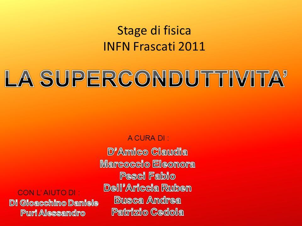 Stage di fisica INFN Frascati 2011 A CURA DI : CON L' AIUTO DI :