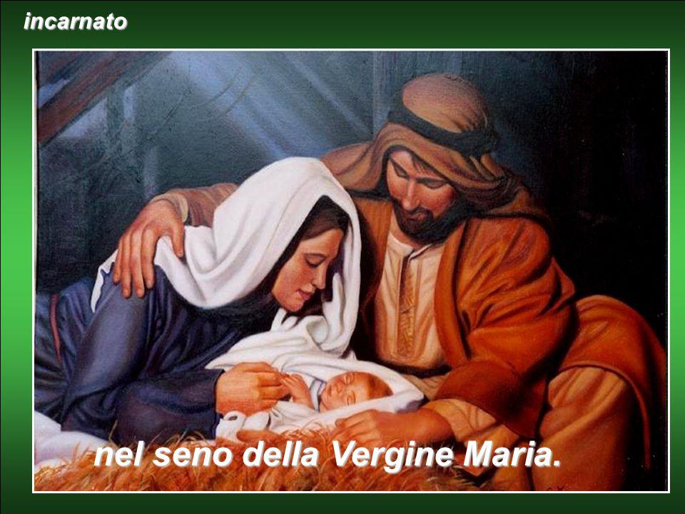 in un solo Signore Gesù Cristo, unigenito Figlio di Dio………….., per opera dello Spirito Santo...