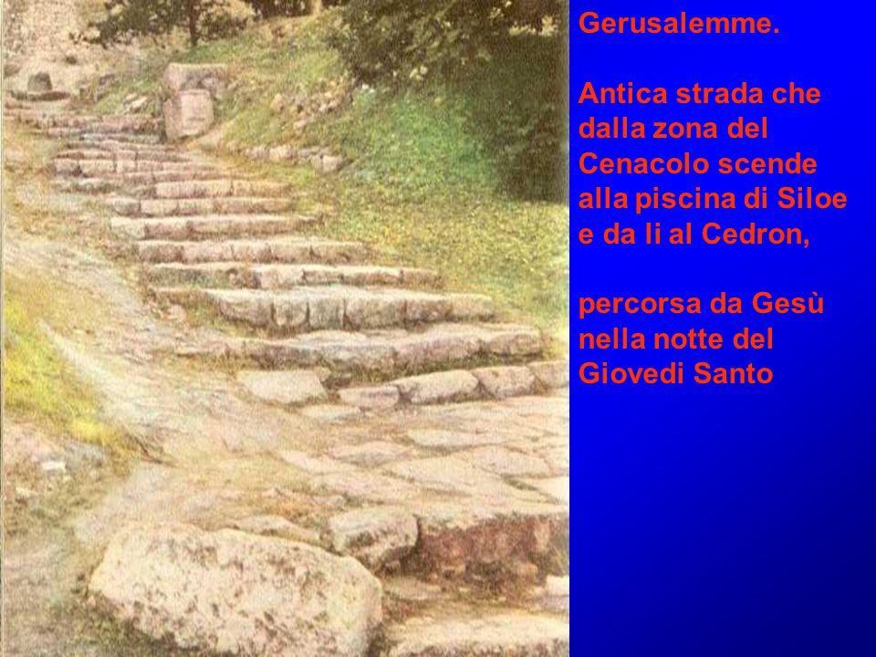 Gerusalemme. Antica strada che dalla zona del Cenacolo scende alla piscina di Siloe e da li al Cedron, percorsa da Gesù nella notte del Giovedi Santo