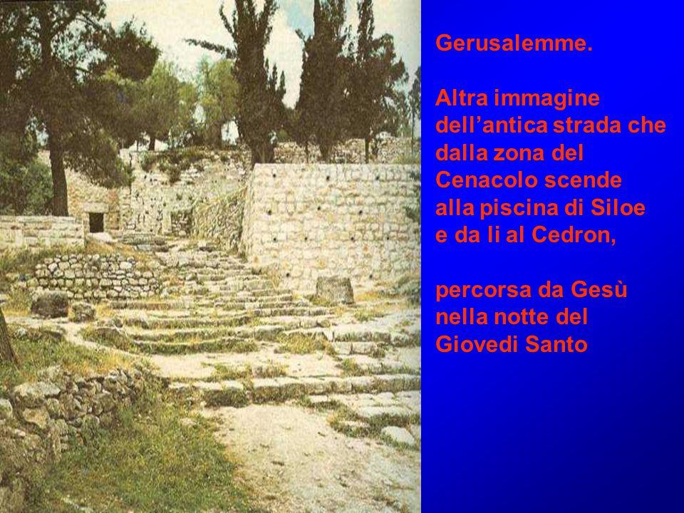 Gerusalemme. Altra immagine dell'antica strada che dalla zona del Cenacolo scende alla piscina di Siloe e da li al Cedron, percorsa da Gesù nella nott