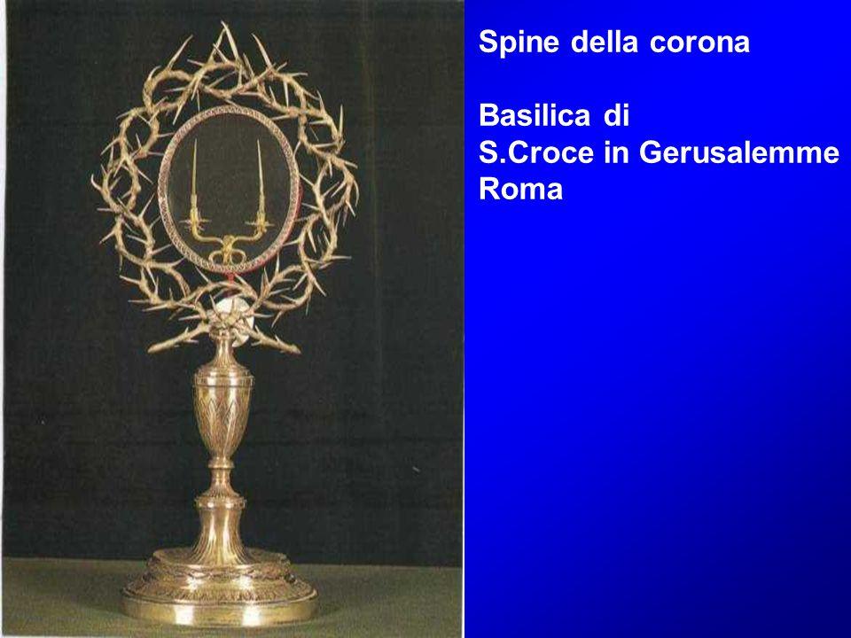 Spine della corona Basilica di S.Croce in Gerusalemme Roma