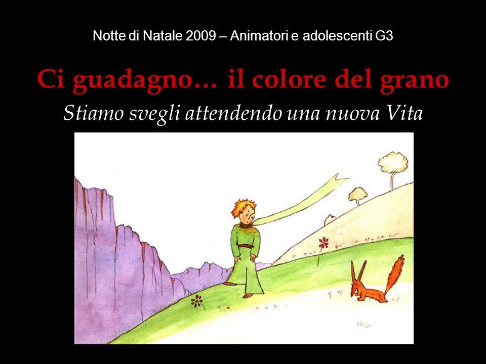 Notte di Natale 2009 – Animatori e adolescenti G3 Ci guadagno… il colore del grano Stiamo svegli attendendo una nuova Vita