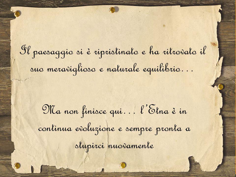 Nocciolo di Castiglione di Sicilia Albero di Pistacchio di Bronte