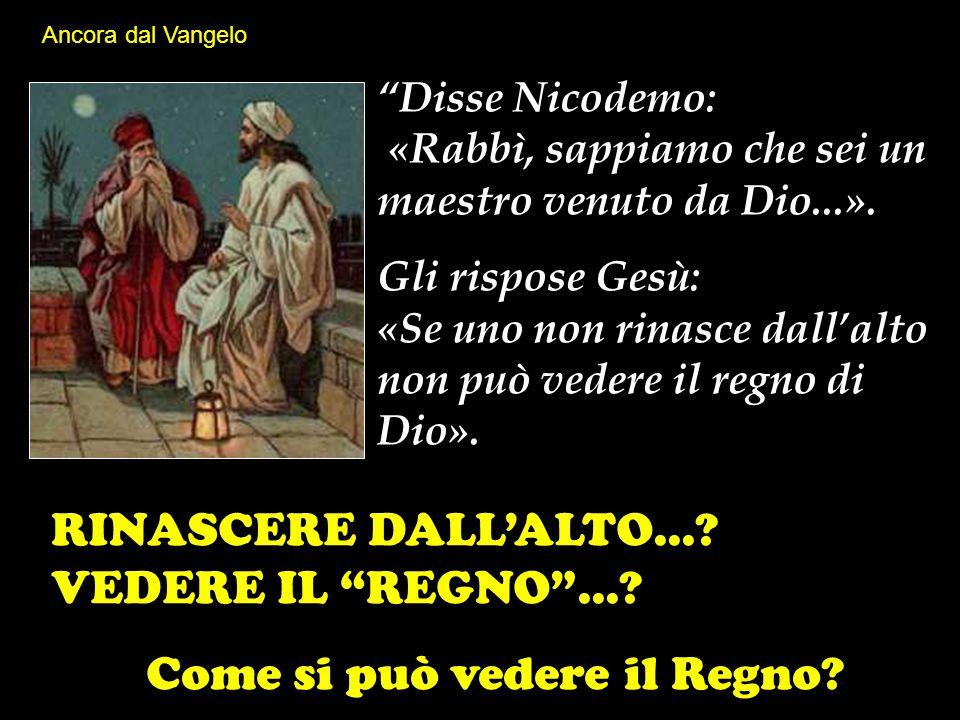 """""""Disse Nicodemo: «Rabbì, sappiamo che sei un maestro venuto da Dio...». Gli rispose Gesù: «Se uno non rinasce dall'alto non può vedere il regno di Dio"""