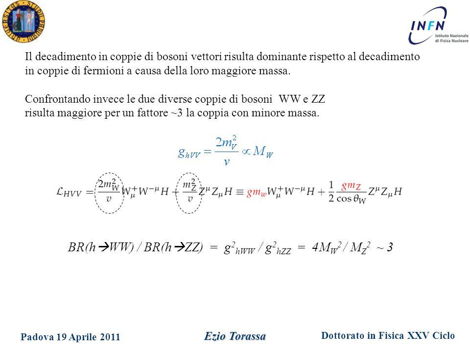Dottorato in Fisica XXV Ciclo Padova 19 Aprile 2011 Ezio Torassa Il decadimento in coppie di bosoni vettori risulta dominante rispetto al decadimento in coppie di fermioni a causa della loro maggiore massa.