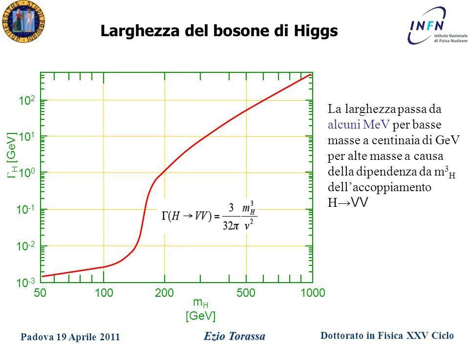 Dottorato in Fisica XXV Ciclo Padova 19 Aprile 2011 Ezio Torassa Larghezza del bosone di Higgs La larghezza passa da alcuni MeV per basse masse a centinaia di GeV per alte masse a causa della dipendenza da m 3 H dell'accoppiamento H →VV