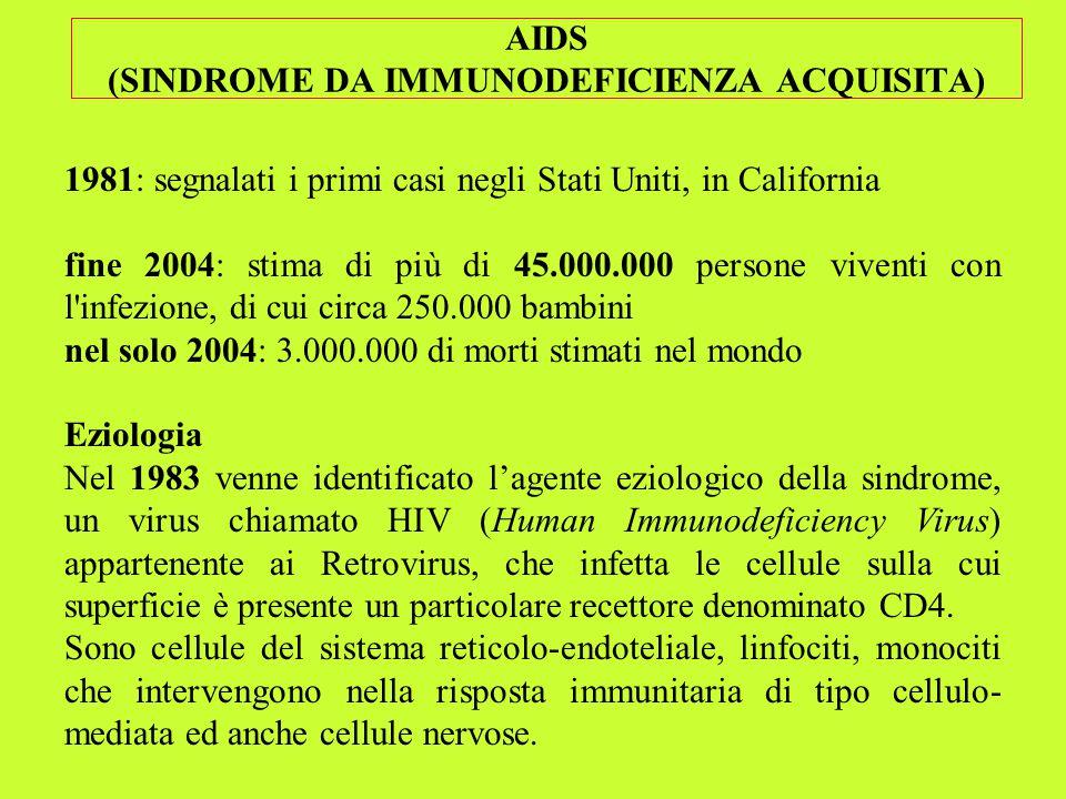 AIDS (SINDROME DA IMMUNODEFICIENZA ACQUISITA) 1981: segnalati i primi casi negli Stati Uniti, in California fine 2004: stima di più di 45.000.000 pers