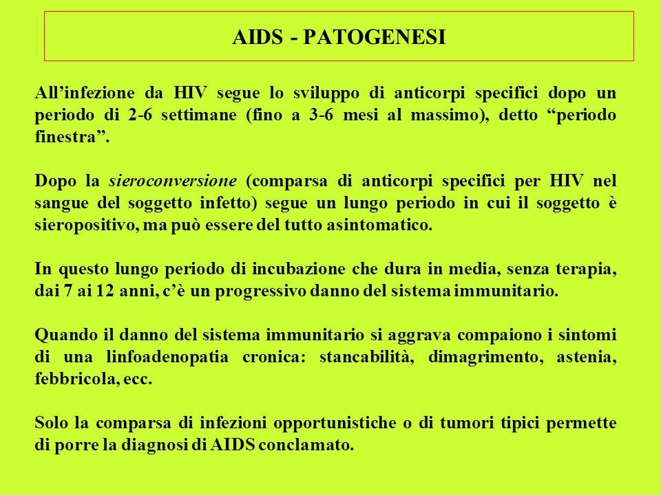 AIDS - PATOGENESI All'infezione da HIV segue lo sviluppo di anticorpi specifici dopo un periodo di 2-6 settimane (fino a 3-6 mesi al massimo), detto periodo finestra .