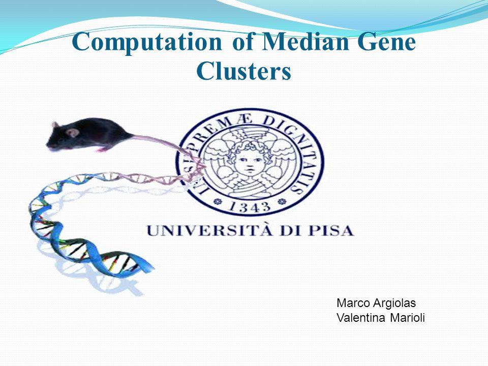 Computation of Median Gene Clusters Marco Argiolas Valentina Marioli