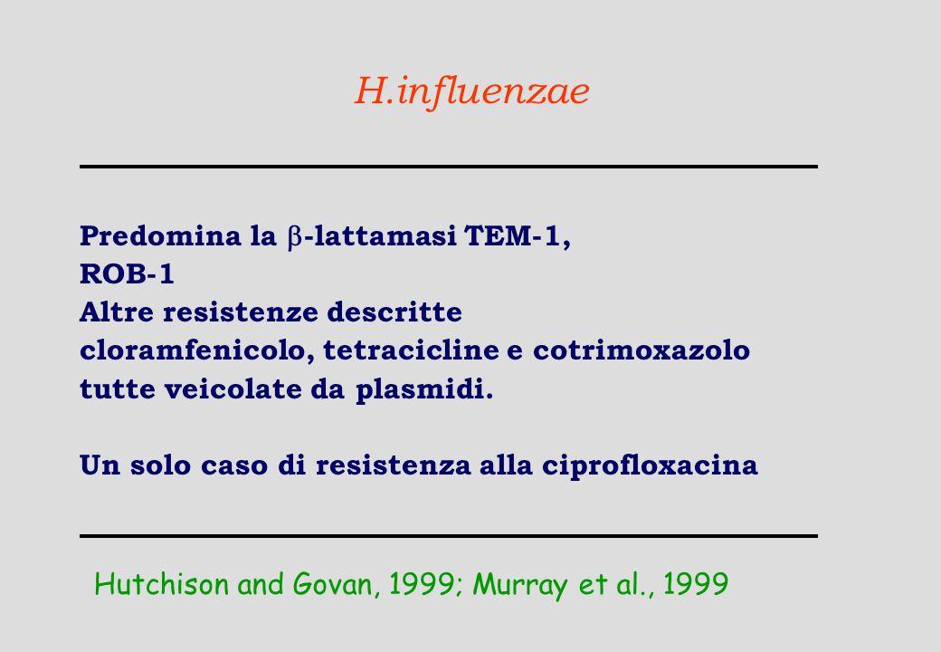 H.influenzae Predomina la  -lattamasi TEM-1, ROB-1 Altre resistenze descritte cloramfenicolo, tetracicline e cotrimoxazolo tutte veicolate da plasmid